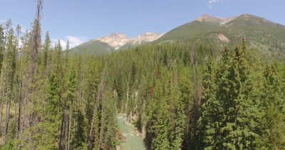 4K aerial high angle on mountains drop between tree over river
