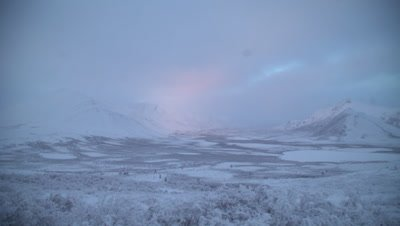 4K sunlight colours in northern Canada winter near arctic circle - NOT Colour Corrected