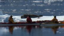 Kayakers Observe Leopard Seal