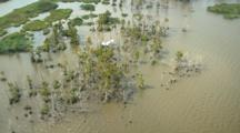 Louisiana Aerials Of Coastline And Wetlands