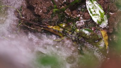 Close up footage looking over a short waterfall