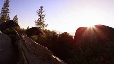 Upward shot of rocks, pine trees, and the sun at sunset.
