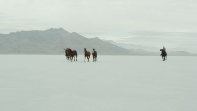 Horses running with cowboys riding across salt flats.