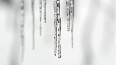 Row of icicle melting with water dripping