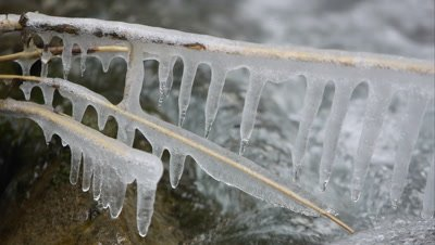 View of icicles on branch in small creek as water flows behind.
