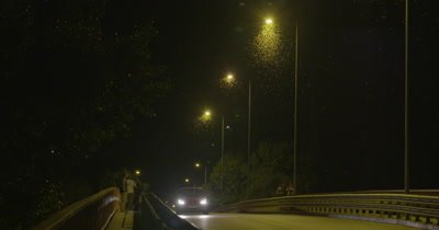 Mayflies swarming the light of the street lamps