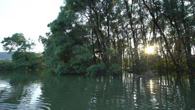 Danube floodplain forest during floods