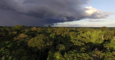 Aerial View Of Rain Forest In Peru, South America
