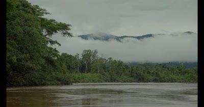 Wild jaguar in the Peruvian rainforest, Tambopata National Reserve