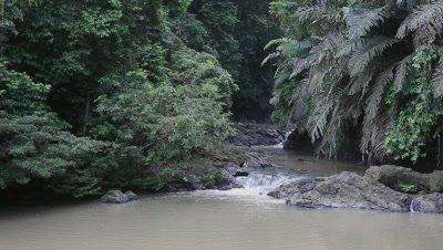 Stream in the rainforest, Malaysia, Borneo