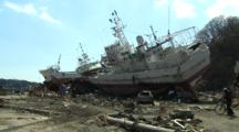 Japan Tsunami Stock Footage