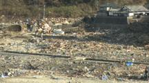 Japan Tsunami Aftermath - Seagulls Fly Over Destroyed Village Near Rikuzentakata
