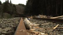 Japan Tsunami Aftermath - Child's Toy Washed Up On Railway Tracks In Shizugawa City