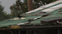 Sheet Metal Roof Starts Peeling In Hurricane Winds