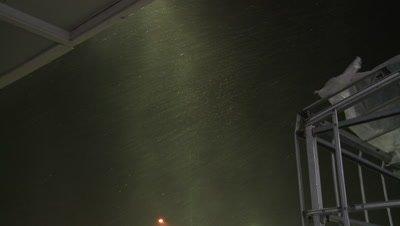 Hurricane Eyewall Wind And Rain Lash Down At Night