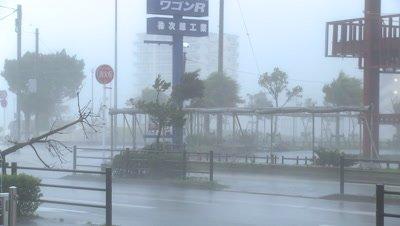 Hurricane Wind And Rain Lash Urban Area