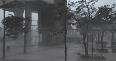 Intense Hurricane Wind Rain Rips Through City