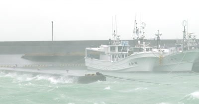 Intense Hurricane Wind Rain Hits Harbor