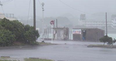 Intense Hurricane Wind Rain Hits City