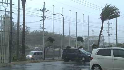 Hurricane Strong Winds Lash City