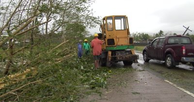 Clearing Fallen Trees After Hurricane Landfall