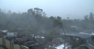 Intense Hurricane Wind Rain Rips Through Town