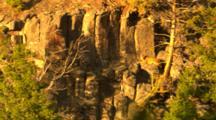 Cougar Lies On Ledge In Golden Light - Wide