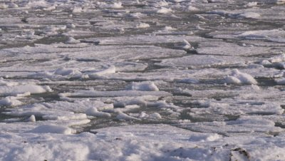 Scenic - Pack ice moving slowly as it freezes together.  Med.