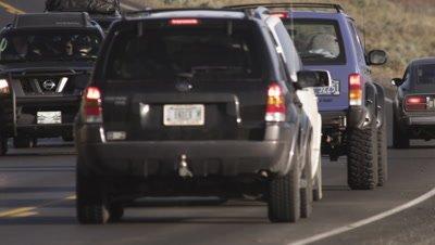 Bison walk down road through stopped vehicles. Medium shot.