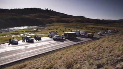 Wide shot of tourists parked on side of road watching bison herd.