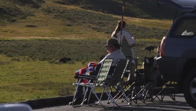 Tourists sit and watch bison.  Med-Wide shot.