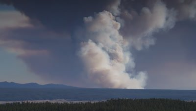 Scenic shot tilting up as smoke roils upward from a forest fire.  Wide.