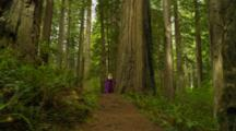 Nordic Woman In Renaissance Costume Enters Redwood Forest