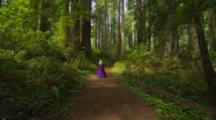 Steadicam Following Nordic Woman In Renaissance Costume Walking Through Redwood Forest