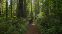 Steadicam Following Nordic Woman In Renaissance Costume Running Through Redwood Forest