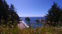 Overlook View Of Bay With Rock Outcrops, Through Wildflowers