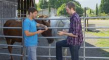 Two Young Men Talk, Pet Horses Near Livestock Corral