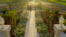 Iron Gate To Garden In Morning Light