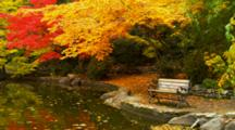 Lithia Park, Colorful Fall Trees And Bench Next To Pond
