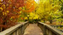 Lithia Park, Colorful Fall Trees And Bridge With Globe Lights