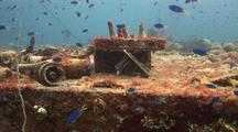 Japanese Shipwreck  With  Schooling Fish And Accesories
