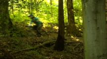 Mountain Bikers Ride A Wooded Trail.