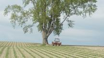 Fields Of Agriculture Crops, Tractor Parked Near Tree