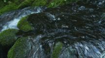 Close Up Creek Flows Over Rocks