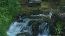 Stream, Creek Flowing Over Rocks In Forest