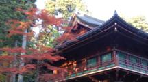 Red Maple Trees And Temple In Nikko, Tochigi, Japan