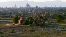 People Walk Cattle Herd Past Bagan Ruins In Myanmar