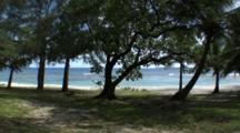 View Of Tropical Beach Through Trees