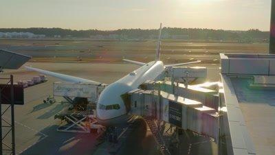 Cargo Unloading from Airplane, Narita, Chiba, Japan