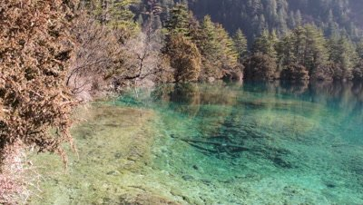 Five Flower Lake, Jiuzhaigou Valley, Sichuan, China